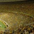 Бразилска публика по време на мач, Бразилия