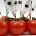 генномодифицирани продукти ГМО