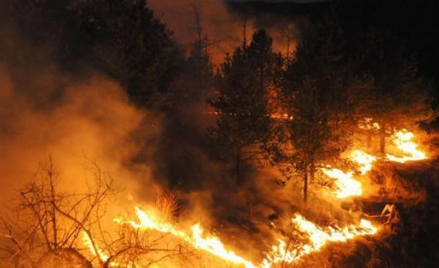 Голям пожар бушува близо до софийското село Локорско