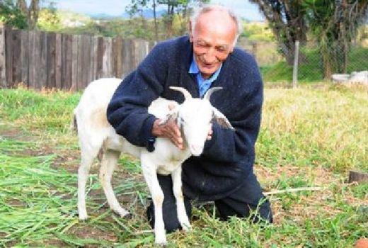 Бразилец се жени за коза - не можела да забременее и да харчи по моловете