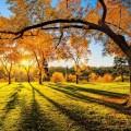 времето, есен, слънце