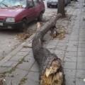 Буря във Варна на 08.12.2013 г.