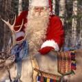 Дядо Коледа с елени