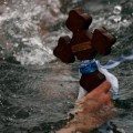 Йордановден - спасяване на кръста от водата