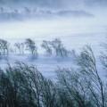 Време, прогноза, времето, мъгла, бедствие, бедствия, вятър, буря, бури