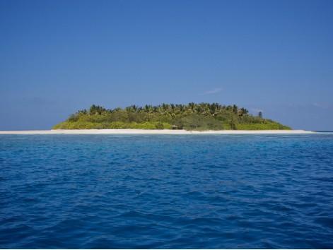 Виц: На остров