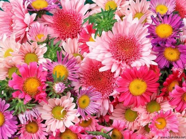Подаръци подходящи за Цветница