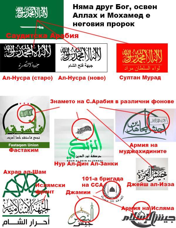 """Знамената, под които се бие """"опозицията"""""""